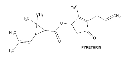 relationship between pyrethrins and pyrethroids insecticide